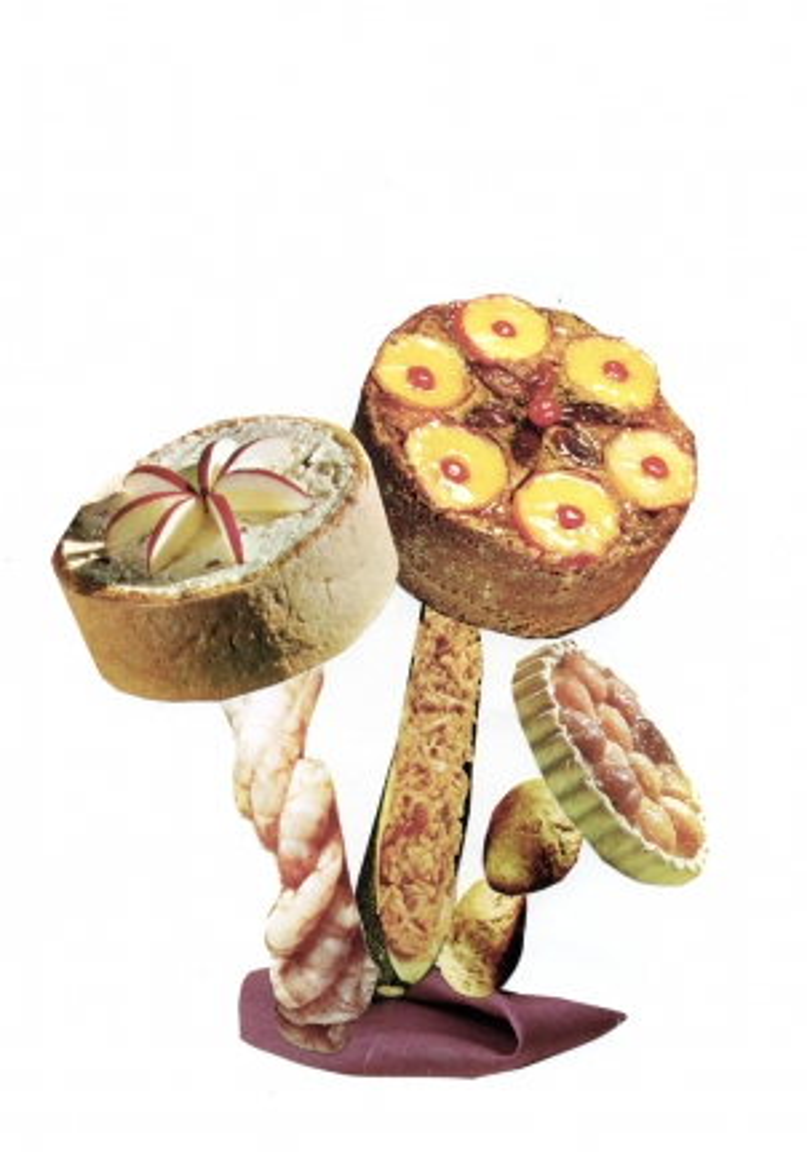 http://claudiahausfeld.com/files/gimgs/th-19_Poisonous Mushrooms037.jpg
